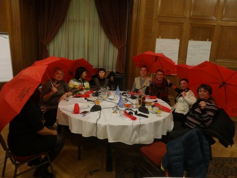 SWAN SWIT Training Budapest, 2015