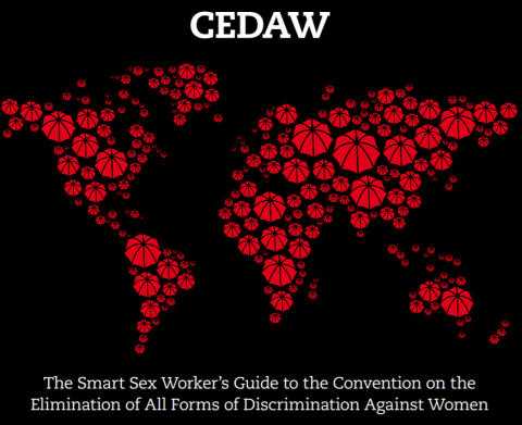 CEDAW Smart Guide image