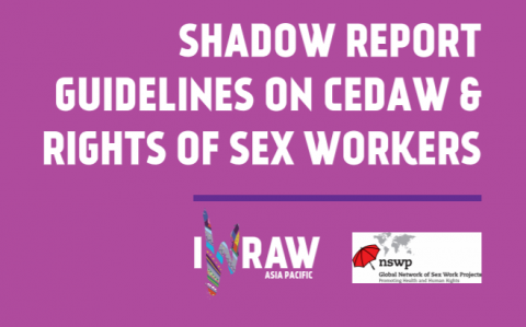 Shadow Report Guidelines image